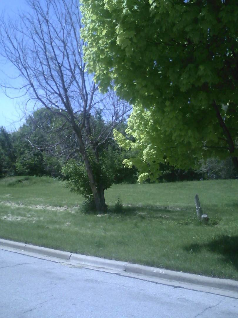 Land for Sale at 1007 1st Street Batavia, Illinois 60510 United States