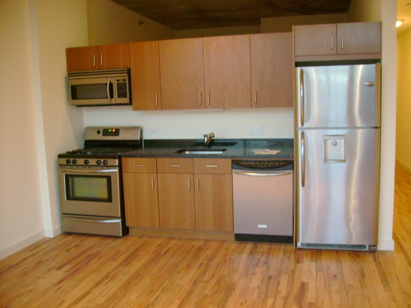Rentals at 1720 South Michigan Avenue Unit 204 Chicago, Illinois 60616 United States