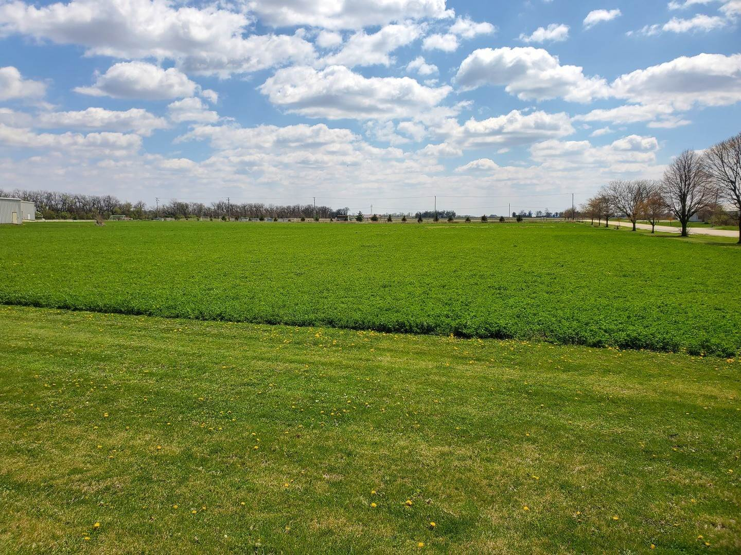 Land for Sale at 617 E 1st Street Gibson City, Illinois 60936 United States