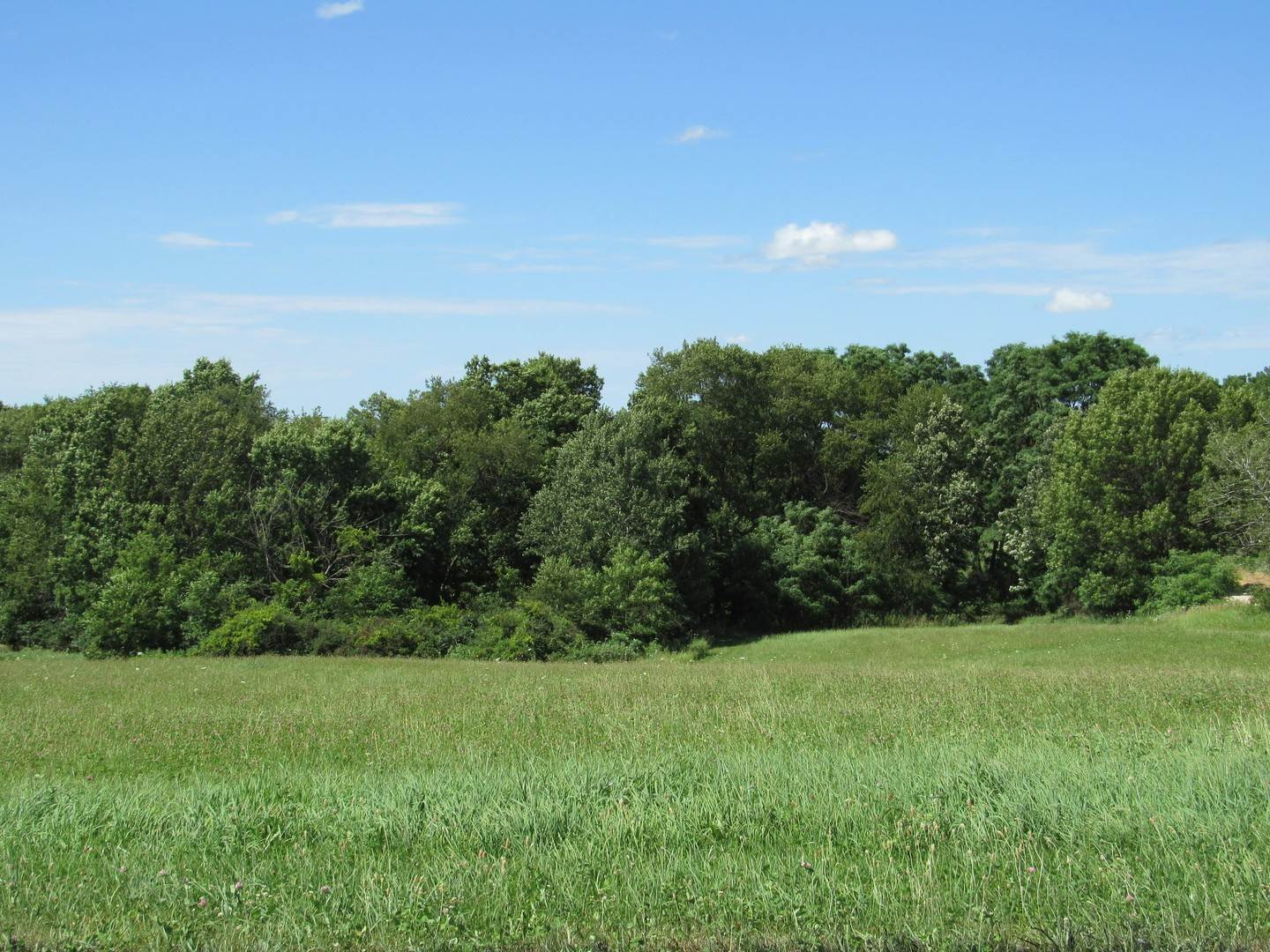 Land for Sale at Lot 8 Foxwood Drive Mount Carroll, Illinois 61053 United States
