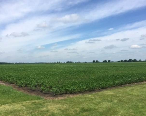 Farm for Sale at Gore Road Morris, Illinois 60450 United States