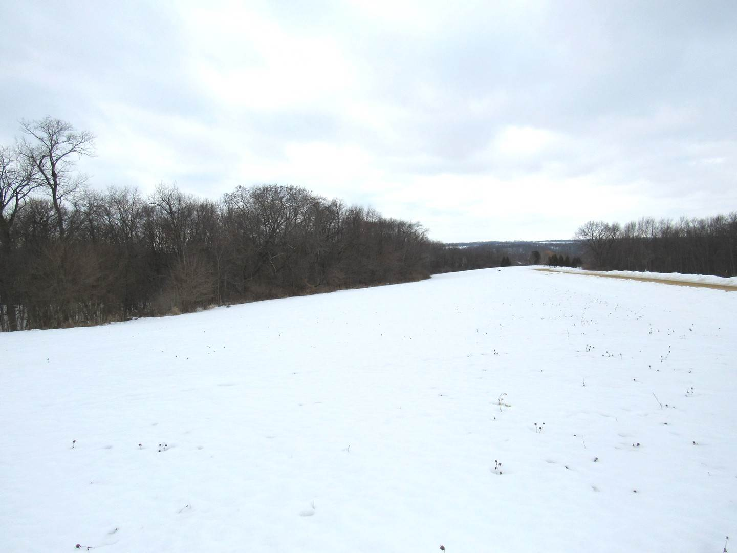 Land for Sale at Lot 10 Foxwood Drive Mount Carroll, Illinois 61053 United States