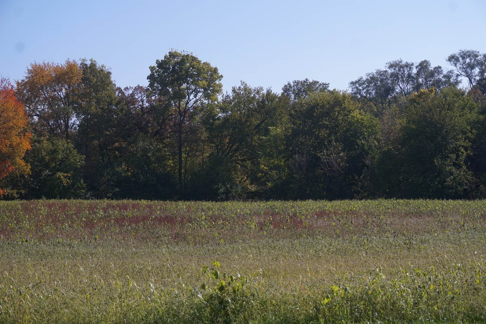 Land for Sale at Sec 8 Twp 34n R 9e Channahon, Illinois 60410 United States