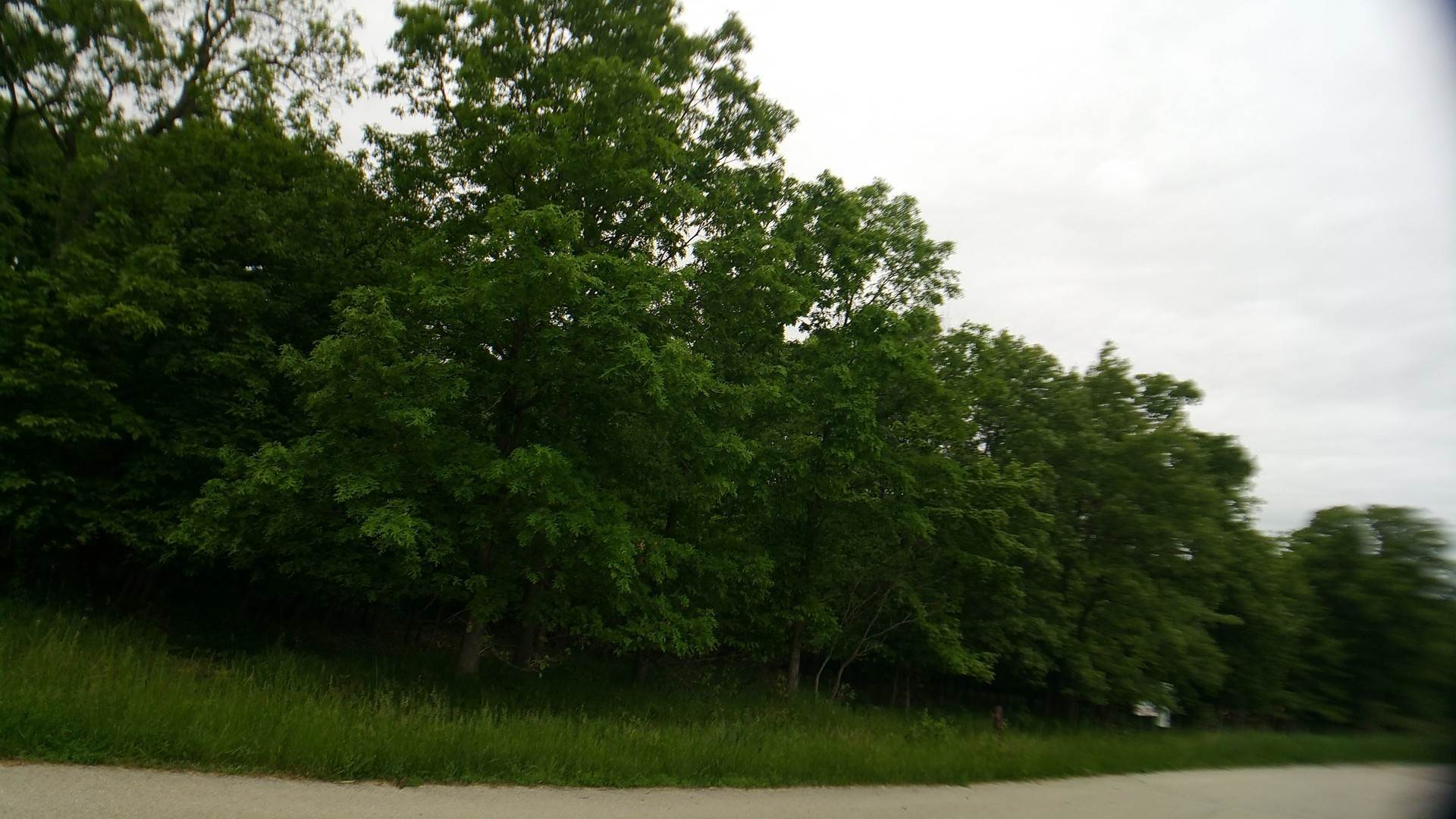 Land for Sale at Lot 24 Eagle Chase Drive Seneca, Illinois 61360 United States