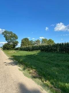 Farm for Sale at Bushnell School Road Newark, Illinois 60541 United States
