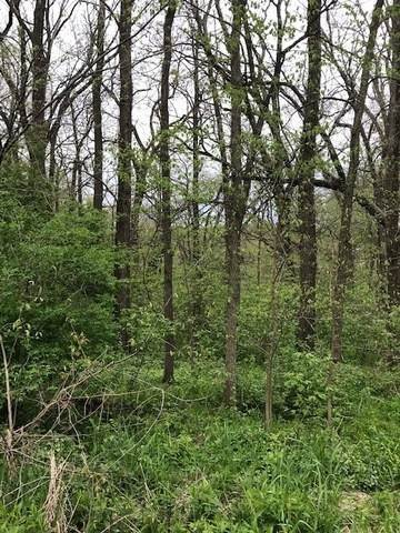 Land for Sale at 1154 Holiday Drive Lake Holiday, Illinois 60552 United States
