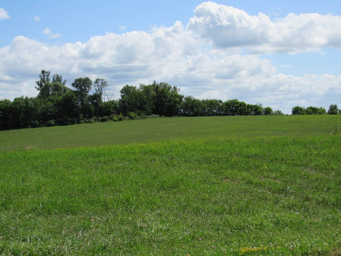 Land for Sale at Lot 9 Foxwood Drive Mount Carroll, Illinois 61053 United States