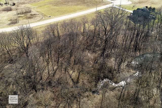 Land for Sale at 38 Ehrenwald Drive Millington, Illinois 60537 United States