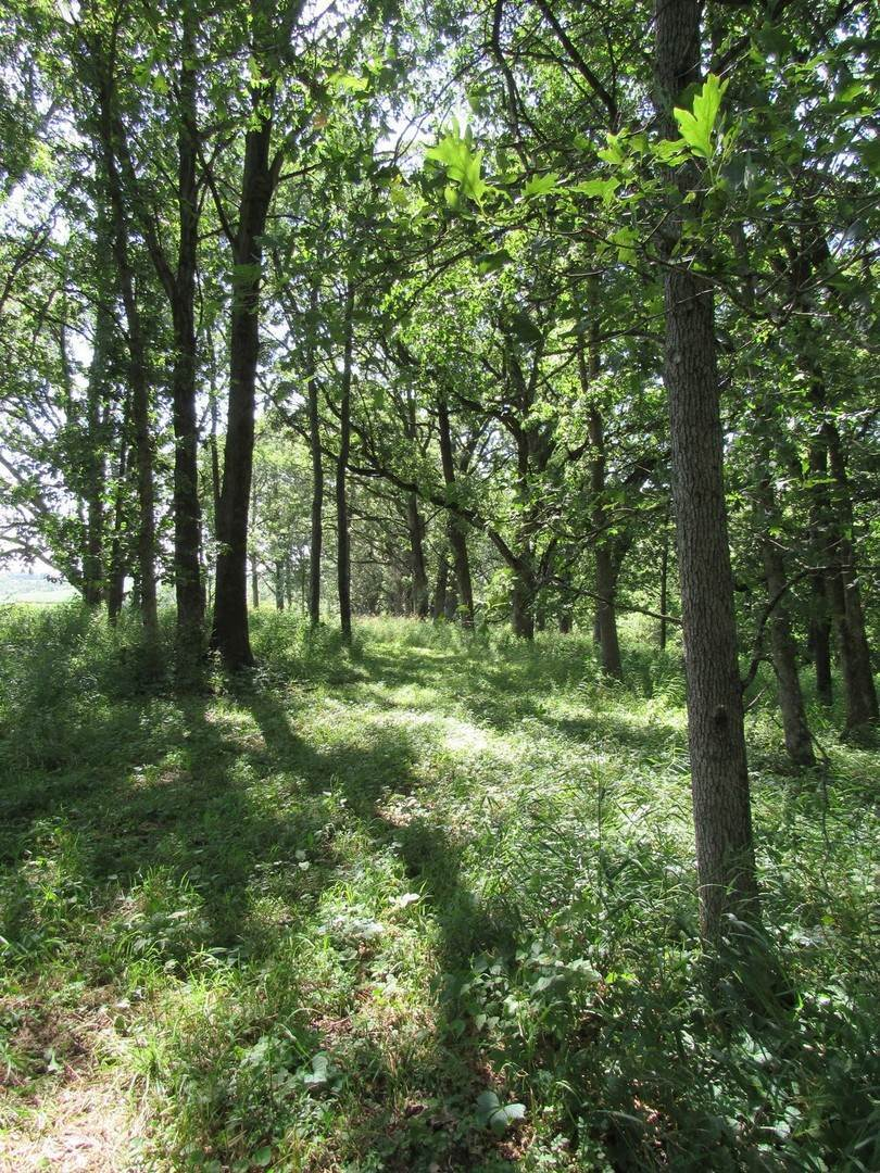 Land for Sale at Lot 17 Route 78 Highway Mount Carroll, Illinois 61053 United States
