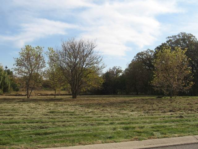 Land for Sale at 9514 Mels Way Union, Illinois 60180 United States