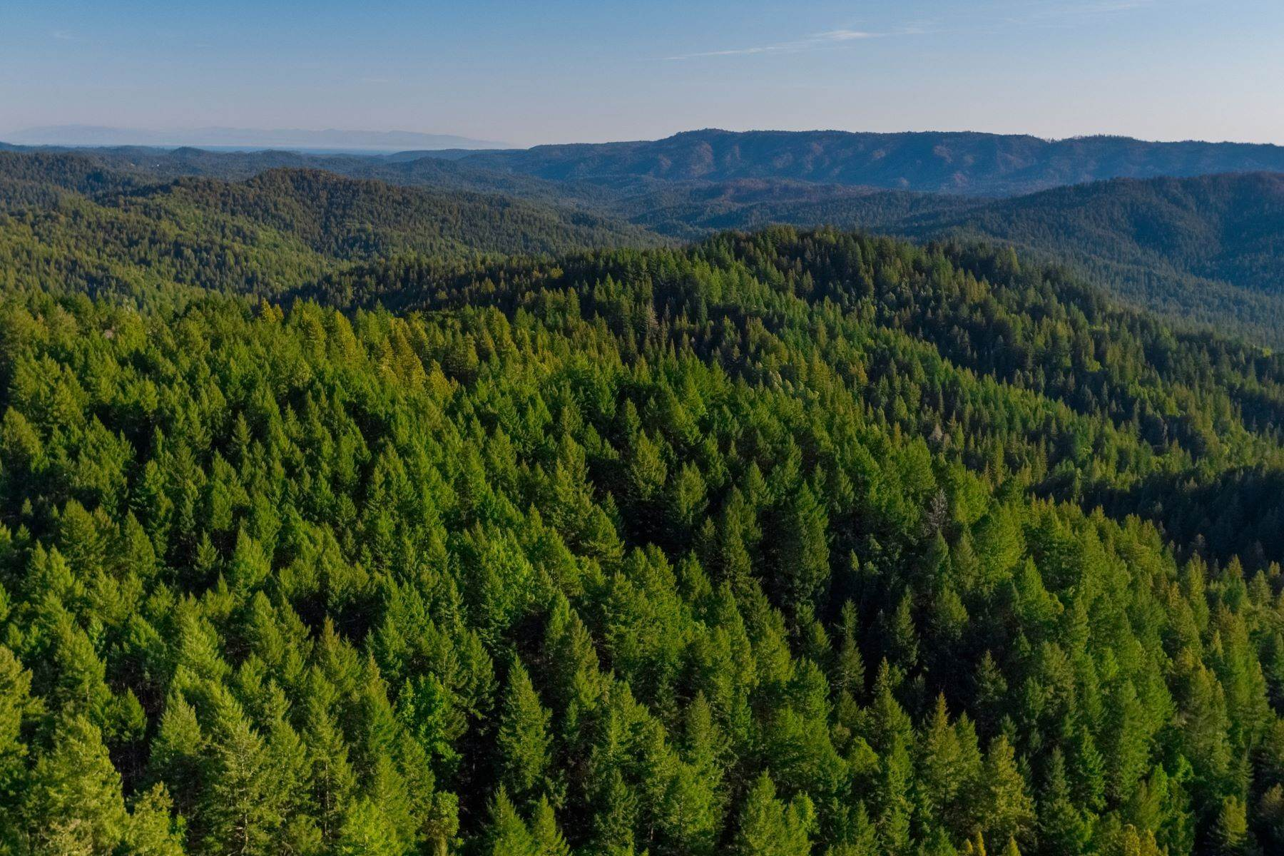 أراضي للـ Sale في Prime Santa Cruz Mountains Acreage 24021 Highway 9 Los Gatos, California 95033 United States